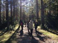 Bastones de nordic walking a la espalda