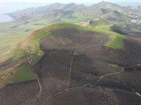 Campos de Lanzarote desde el aire