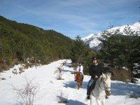 Paseando por un camino nevado
