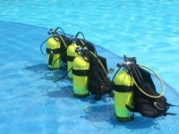 Get started in diving