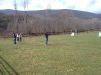 Field of targets