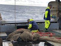 Trabajo de pesca con redes