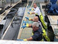 Pesca profesional en barco de Castellon