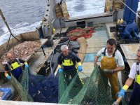 Sacudiendo las redes en Castellon