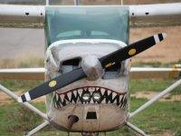 Il nostro aereo squalo