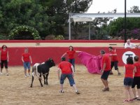 Bullfighting group