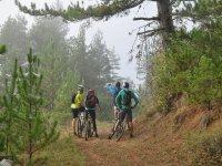 与山地自行车林天的山地自行车道