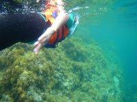 Beach underwater walk de Aro