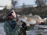 Pesca en Castellón