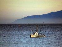 Aprender a pescar en Castellón