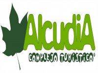 Alcudia Complejo Turístico Tirolina
