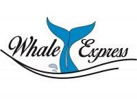 Whale Express Motos de Agua