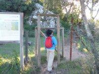 的橡子的探险活动自然公园