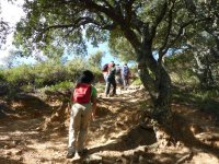 Trekking in the Alcornocales