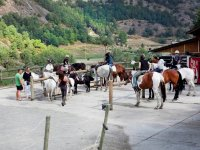 Tomando posiciones en los caballos