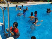 手工艺作坊和游泳在游泳池享受现场
