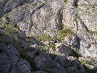 Sendero en el monte