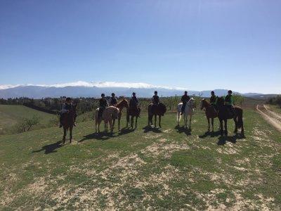 Granada Horse Center