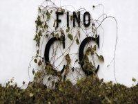 Fino Cruz Conde