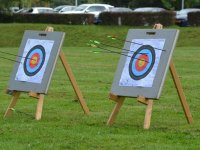 Arrows nailed to the target