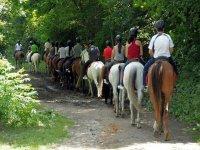 Horseback riding for team building