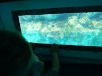 Vision submarina en el barco