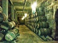 具有悠久传统的酒庄