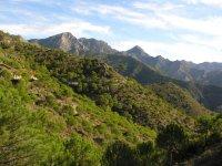 Ruta por las Sierras de Tejeda