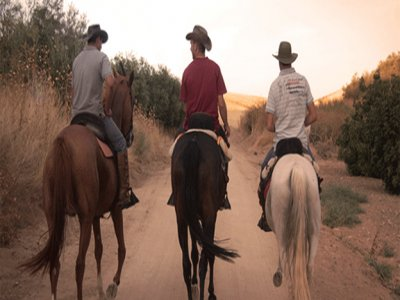 Entre Caballos Team Building