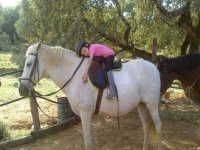 Paseo infantil a caballo