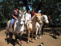 Grupo con varios caballos