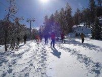 Walk through the snowy field