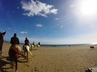 Arriving at the beach on horseback