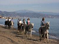 On horseback along the beach