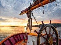 Timon del barco clasico