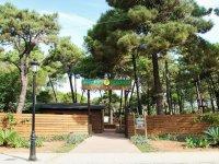 Accedi all'Amazzonia Marbella