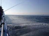 Tratando de pescar en el Golfo de Vizcaya
