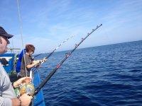 Buscando las capturas en el mar