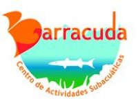 Barracuda Buceo