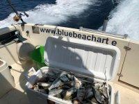 Pesca del dia en Murcia