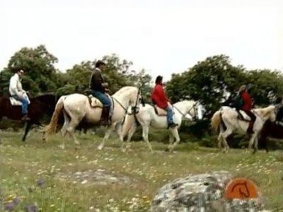 Ruta a caballo en Higuera la Real. 5 h. + Comida