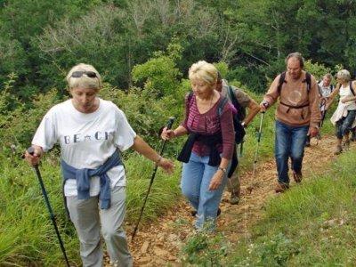 Ultreya Tours Visitas Guiadas