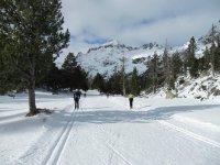un camino por la nieve