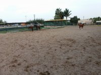 Track of the horse-riding Los Robles