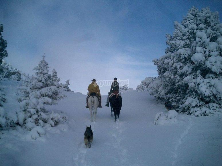 Passeggiando a cavallo nella neve