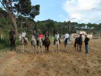 Companions on the horses on the beach