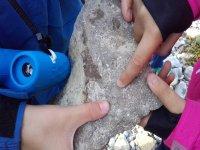 Conociendo las diferentes rocas