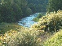 标志urola河绿色