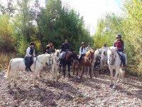 Rutas a caballo por Valladolid