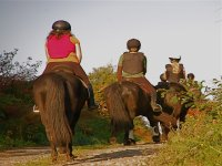 骑马为所有年龄和水平